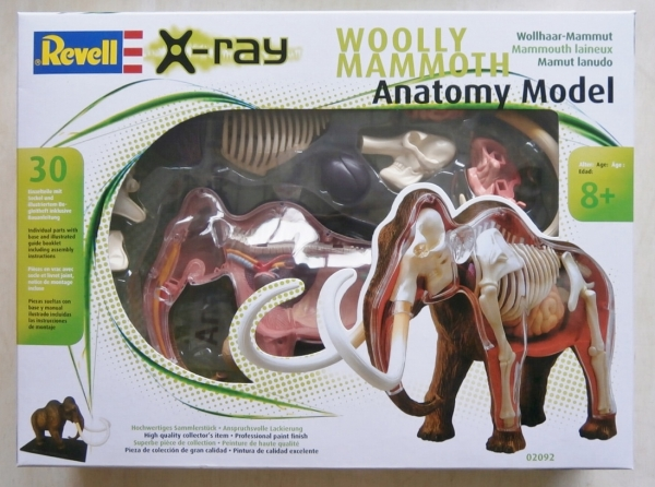 02092 WOOLY MAMMOTH ANATOMY MODEL 1/22