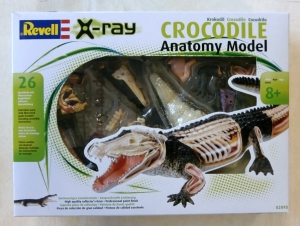 REVELL  02095 CROCODILE ANATOMY MODEL